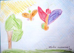 Мдоу детский сад 4 солнышко зато