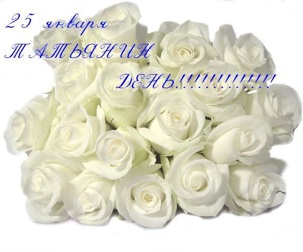 38632566_69ea063020a2.jpg