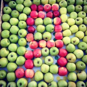 apple-self.jpg