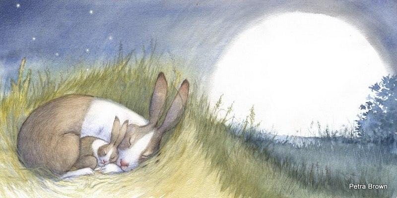 Флудильня о кроликах File